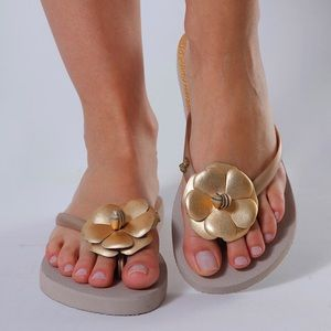 de14486ec Women Gold Camelia Flip Flops Sandals Slippers